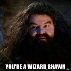 Yer A Wizard Harry Hagrid -  YOU'RE A WIZARD SHAWN