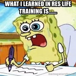 Spongebob What I Learned In Boating School Is - what i learned in res life training is.......