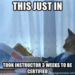 newspaper cat realization - This just in took Instructor 3 weeks to be certified