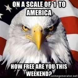 Freedom Eagle  - ON A SCALE OF  1  TO AMERICA HOW FREE ARE YOU THIS WEEKEND?
