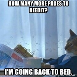 newspaper cat realization - How many more pages to reedit? I'm going back to bed.