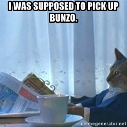 newspaper cat realization - I was supposed to pick up Bunzo.
