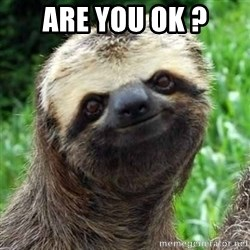 Sarcastic Sloth - Are you ok ?