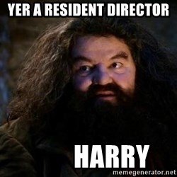 Yer A Wizard Harry Hagrid - Yer a Resident Director          Harry