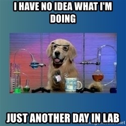 Chemistry Dog - I have no idea what I'm doing Just another day in lab