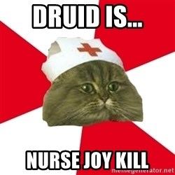 Nursing Student Cat - DRUID Is... NURSE JOY KILL