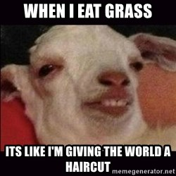 10 goat - when i eat grass its like i'm giving the world a haircut
