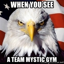 Freedom Eagle  - when you see a team mystic gym