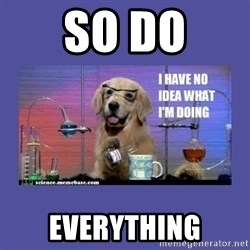 I don't know what i'm doing! dog - so do everything