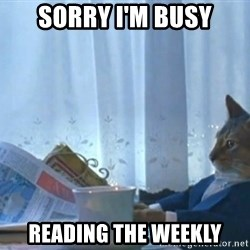 newspaper cat realization - Sorry I'm busy reading the Weekly