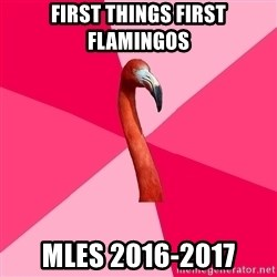Fanfic Flamingo - First Things First Flamingos MLES 2016-2017
