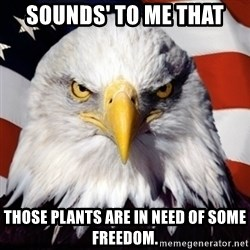 Freedom Eagle  - Sounds' to me that Those plants are in need of some freedom.