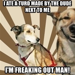 Stoner dogs concerned friend - I ate a turd made by the dude next to me I'm freaking out man!