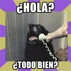 Yes, this is dog! - ¿Hola? ¿Todo bien?