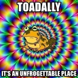 hypno toad - Toadally It's an unfrogettable place
