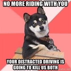 Cool Dog - no more riding with you your distracted driving is going to kill us both