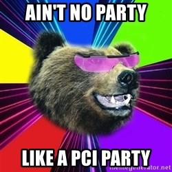 Party Bear - Ain't no party like a pci party