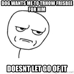 Are You Fucking Kidding Me - dog wants me to trhow frisbee for him doesnt let go of it