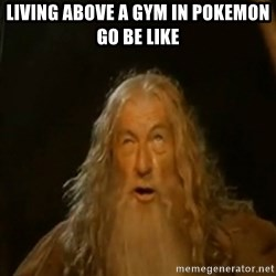 Gandalf You Shall Not Pass - living above a gym in pokemon go be like
