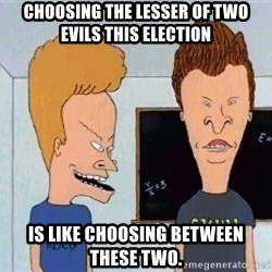 Beavis and butthead - Choosing the lesser of two evils this election is like choosing between these two.