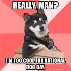Cool Dog - really, man? i'm too cool for national dog day.