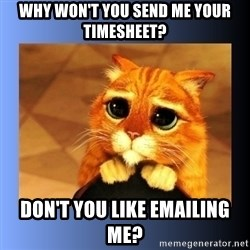 puss in boots eyes 2 - Why won't you send me your timesheet? Don't you like emailing me?