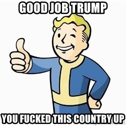 Cool Story Bro - Good job Trump you fucked this country up