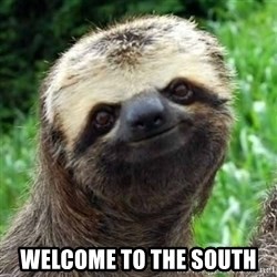 Sarcastic Sloth -  Welcome to the South