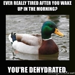 good advice duck - Ever really tired after you wake up in the morning? You're dehydrated.