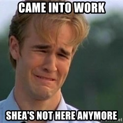 James Van Der Beek - Came into work Shea's not here anymore