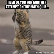 Begging Cat - I beg of you for another attempt on the math quiz...