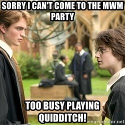 Harry Potter  - Sorry I can't come to the MWM party Too busy playing quidditch!