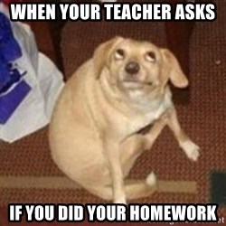 Oh You Dog - When your teacher asks  if you did your homework