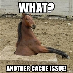 Hole Horse - WHAT? Another cache issue!