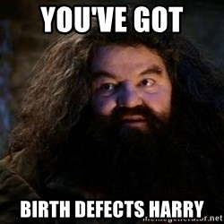 Yer A Wizard Harry Hagrid - you've got  birth defects harry