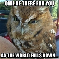 Overly Angry Owl - Owl be there for you as the world falls down...