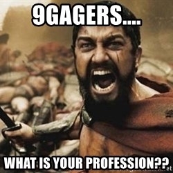 300 - 9GAGERs.... WHAT is your PROFESSION??