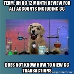 Chemistry Dog - Team, uh do 12 month review for all accounts including CC Does not know how to view CC transactions