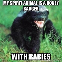 Honey Badger Actual - My spirit animal is a honey badger with rabies