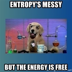 Chemistry Dog - entropy's messy but the energy is free
