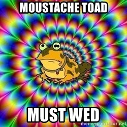 hypno toad - Moustache toad Must wed