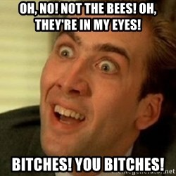 nicolas cage no me digas - OH, NO! NOT THE BEES! OH, THEY'RE IN MY EYES!  BITCHES! YOU BITCHES!