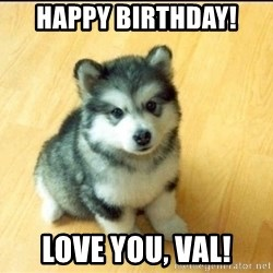 Baby Courage Wolf - Happy Birthday! Love you, Val!