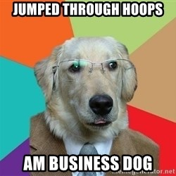 Business Dog - JUMPED THROUGH HOOPS AM BUSINESS DOG