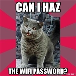 I can haz - CAN I HAZ THE WIFI PASSWORD?
