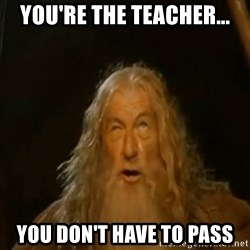 Gandalf You Shall Not Pass - You're the teacher... You don't HAVE to pass