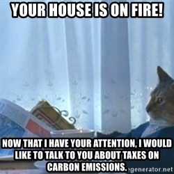 newspaper cat realization - YOUR HOUSE IS ON FIRE! Now that I have your attention, I would like to talk to you about taxes on carbon emissions.