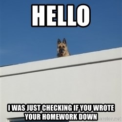 Roof Dog - Hello I was just checking if you wrote your homework down