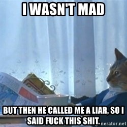 newspaper cat realization - I wasn't mad but then he called me a liar, so i said fuck this shit.