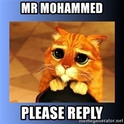 puss in boots eyes 2 - Mr Mohammed  Please reply